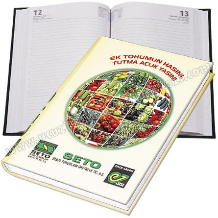 Toptan 17x24 Günlük Ajanda - Sıvama Kapak - Dikişli GAJ620-17